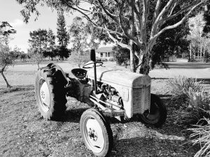 Abandoned tractor at Wilderness Cottages, Hunter Valley