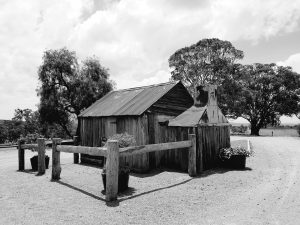 Rustic cabin at a Hunter Valley winery